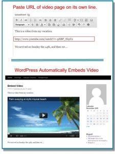 Nhúng video vào Wordpress